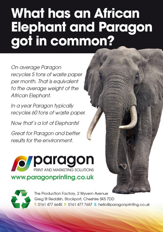 Paragon Elephant Flyer WEB